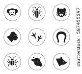 set of 9  zoology icons....