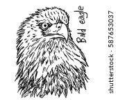 bald eagle's head   vector... | Shutterstock .eps vector #587653037