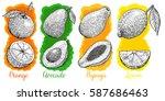 set of illustrations of fruits... | Shutterstock .eps vector #587686463