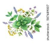 watercolor hand painted bouquet ... | Shutterstock . vector #587689007
