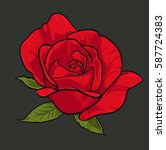 hand drawn red rose on green... | Shutterstock .eps vector #587724383