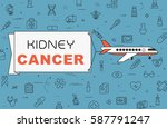 """airplane with banner """"kidney...   Shutterstock .eps vector #587791247"""