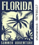 florida summer tee graphic... | Shutterstock .eps vector #587930117