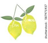 watercolor lemon  info graphic... | Shutterstock .eps vector #587971937