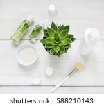 green cosmetics flat lay with... | Shutterstock . vector #588210143