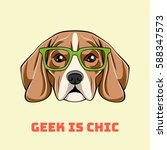 cute portrait of nerdy beagle... | Shutterstock .eps vector #588347573