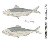 sardines. seafood design... | Shutterstock .eps vector #588367673
