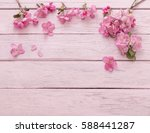 Apple Flowers On Pink Wooden...