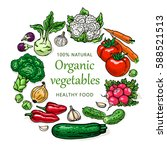 organic vegetables illustration ... | Shutterstock .eps vector #588521513