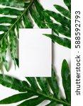 tropical botanical background... | Shutterstock . vector #588592793