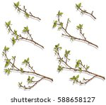 color pattern of branches with... | Shutterstock .eps vector #588658127
