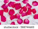 Stock photo rose petals on white background top view 588744683