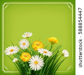 fresh spring  daisies and...   Shutterstock .eps vector #588854447