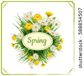fresh spring  daisies and... | Shutterstock .eps vector #588854507