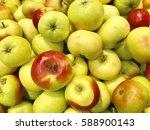 fresh red and yellow apples | Shutterstock . vector #588900143