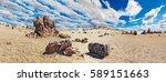 lunar landscape in tenerife... | Shutterstock . vector #589151663