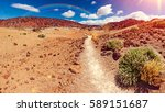 lunar landscape in tenerife... | Shutterstock . vector #589151687
