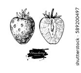 strawberry vector drawing set.... | Shutterstock .eps vector #589200497