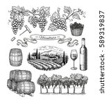 viticulture big set isolated on ... | Shutterstock . vector #589319837