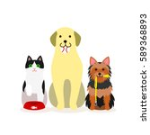 small group of dogs and cat who ... | Shutterstock .eps vector #589368893