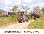 serengeti national park ... | Shutterstock . vector #589426793