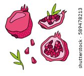 hand drawn pomegranate set.... | Shutterstock .eps vector #589478213