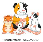 group of cartoon pets rodents.  | Shutterstock .eps vector #589692017