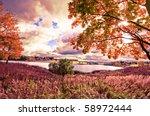 autumn landscape | Shutterstock . vector #58972444