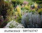 flowers in the garden | Shutterstock . vector #589763747