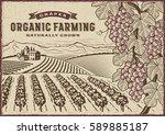 grapes organic farming... | Shutterstock .eps vector #589885187