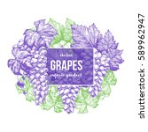 Grapes Design Template. Hand...