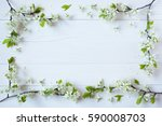 Stock photo background with flowering branches of plums cherries 590008703