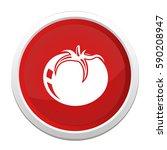 vegetable tomato icon | Shutterstock .eps vector #590208947