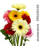 beautiful bouquet of gerbera... | Shutterstock . vector #590230133
