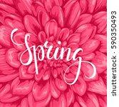 spring. hand drawn brush pen... | Shutterstock .eps vector #590350493