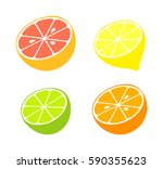 citrus fruit collection. vector ... | Shutterstock .eps vector #590355623