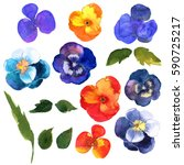 floral set. collection with... | Shutterstock . vector #590725217