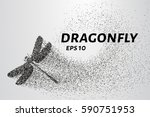 dragonfly of the particles.... | Shutterstock .eps vector #590751953