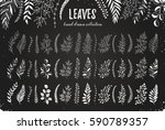 hand drawn branches collection. ... | Shutterstock .eps vector #590789357