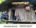 yen bai  vietnam   sep 17  2016 ... | Shutterstock . vector #590923067