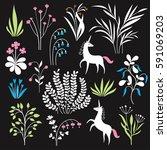 floral set  vector botany... | Shutterstock .eps vector #591069203
