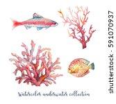 watercolor nautical set. hand... | Shutterstock . vector #591070937