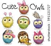set of cute cartoon owls on a... | Shutterstock . vector #591121727