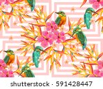 seamless summer tropical... | Shutterstock .eps vector #591428447