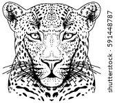 leopard face tattoo  vector... | Shutterstock .eps vector #591448787
