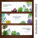 horizontal banners set on a... | Shutterstock .eps vector #591592013