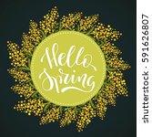 hello spring  hand lettered...   Shutterstock .eps vector #591626807