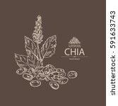 background with chia  plant and ... | Shutterstock .eps vector #591633743
