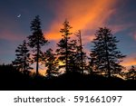 scenic sunset and moon rise ... | Shutterstock . vector #591661097