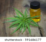 green leaves of medicinal... | Shutterstock . vector #591686177